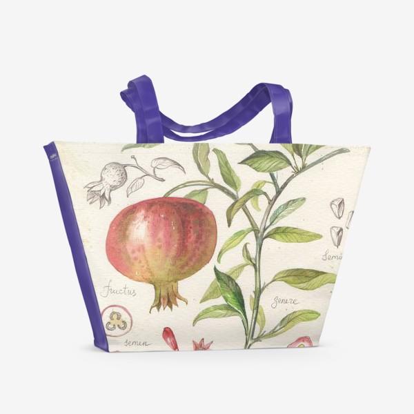 Пляжная сумка «ботаническая иллюстрация гранат»