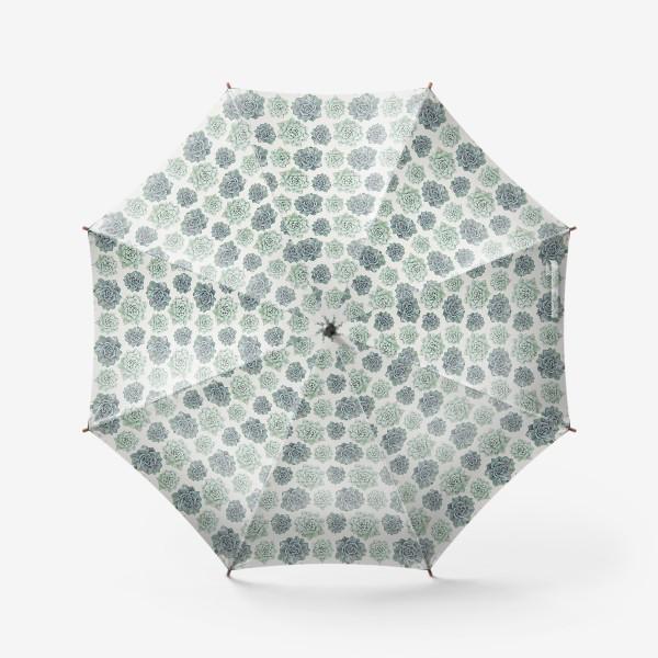Зонт «Узор с суккулентами»