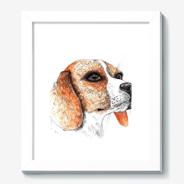 Картина «Собака Бигль Рисунок»