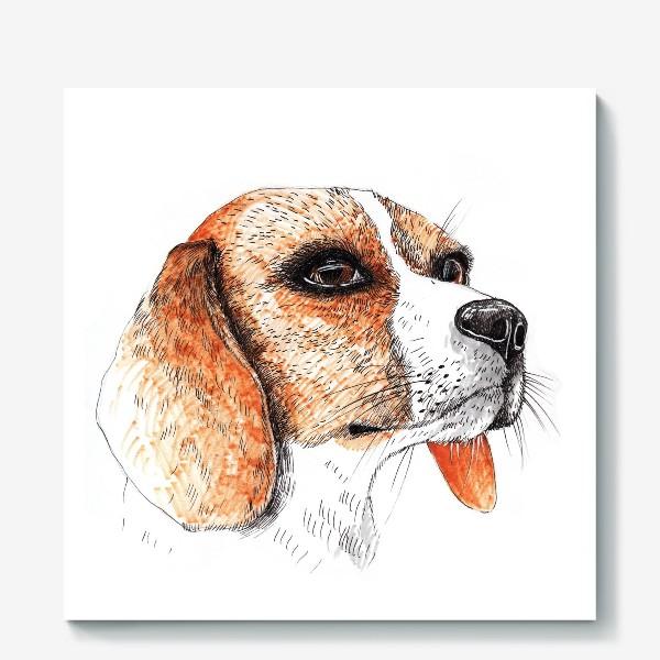 Холст «Собака Бигль Рисунок»