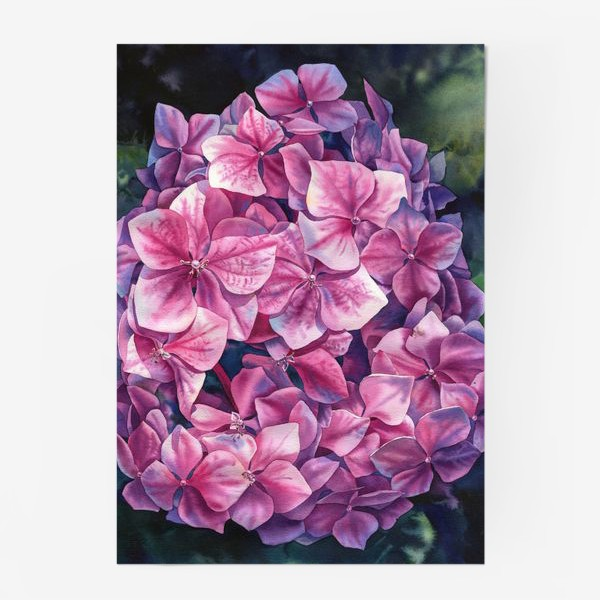 Постер «Spring hydrangea»