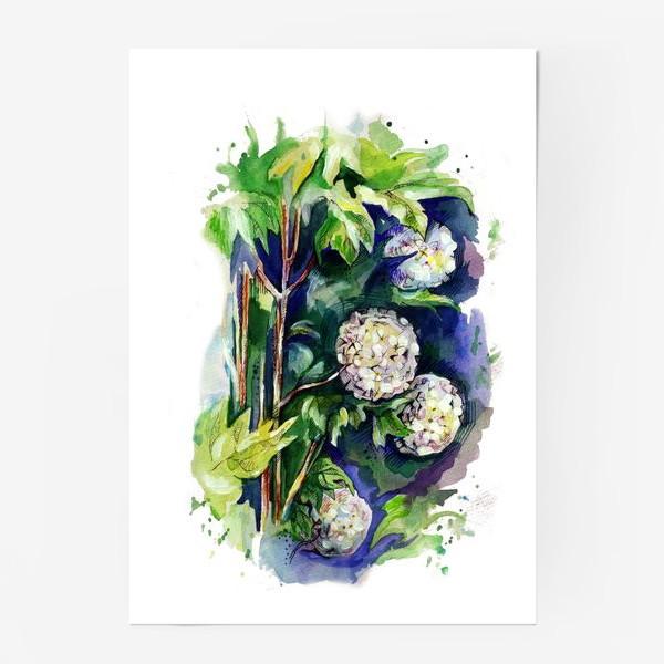 Постер «Цветы калины»