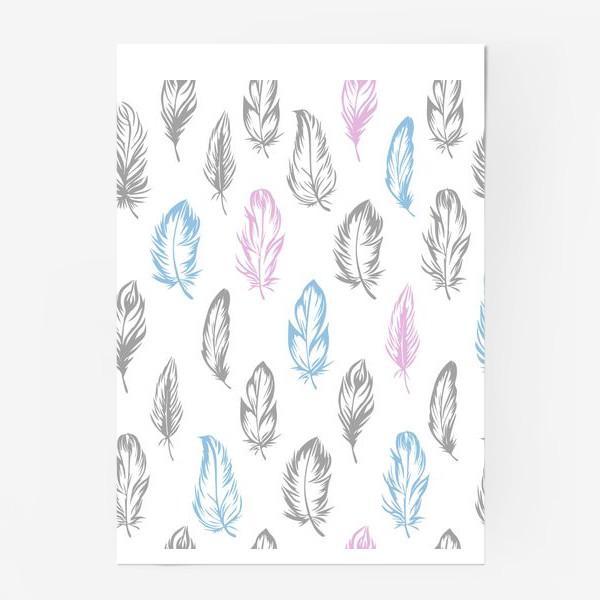 Постер «Серые, голубые, розовые перышки на белом бесшовный паттерн»