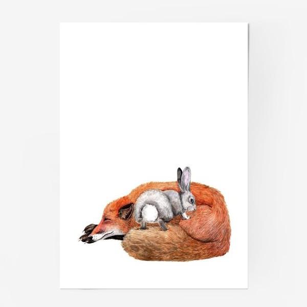 Постер «Заяц и лиса»