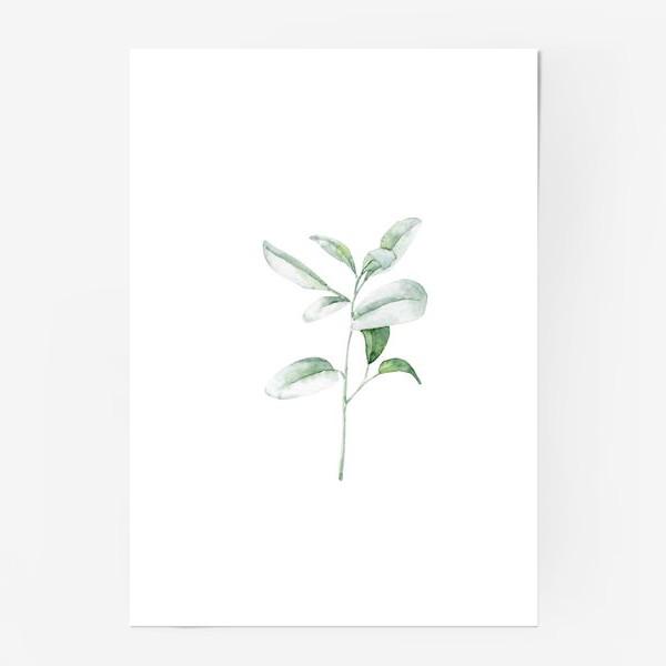 Постер «Акварельная веточка»