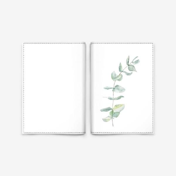 Обложка для паспорта «Ветка эвкалипта»