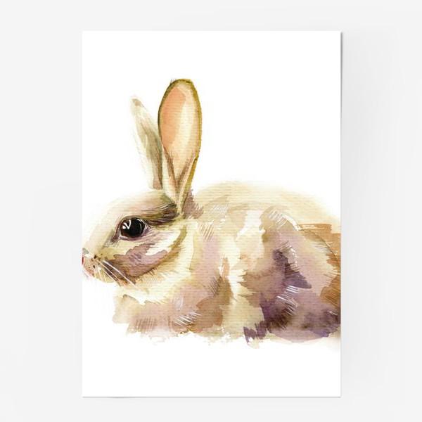 Постер «Кролик»