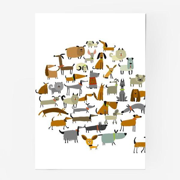 Постер «Любимые животные»