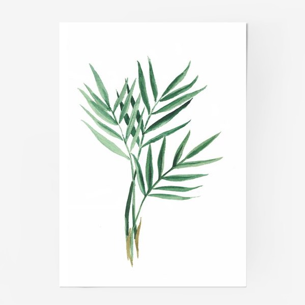 Постер «Plants»
