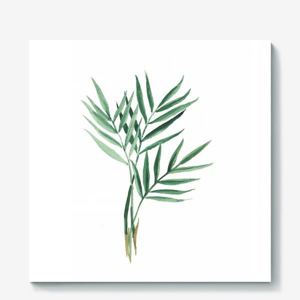 Холст «Plants»