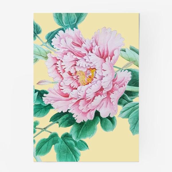 Постер «Пионы в японском стиле»