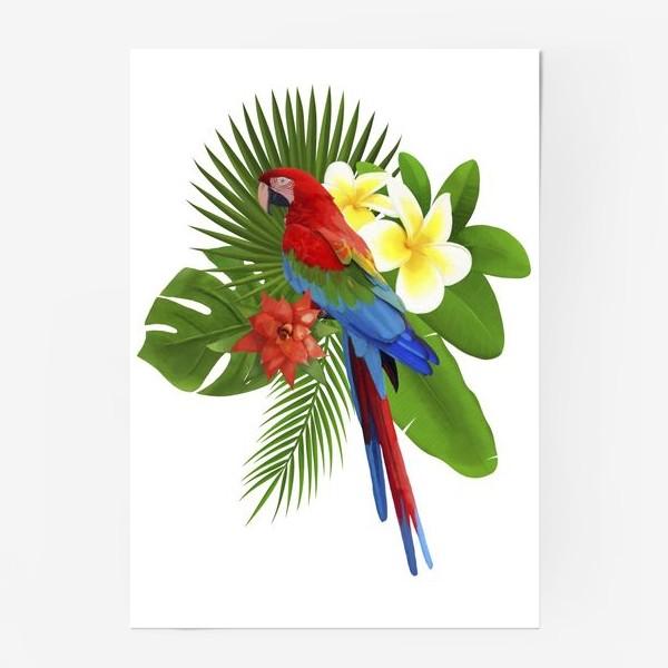 Постер «Попугай Ара в пальмовых листах»