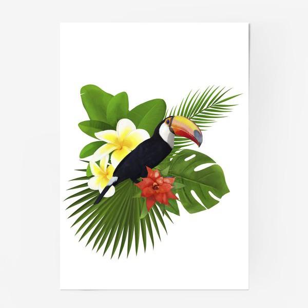 Постер «Тукан. Пальма. Плюмерия. Ананас»