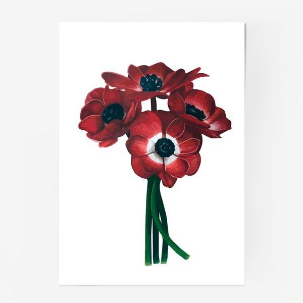 Постер «Красные цветы - Анемоны»