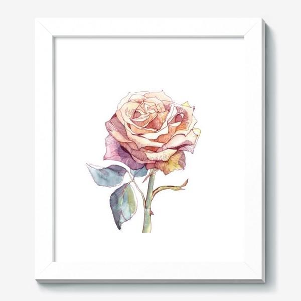 Картина «Персиковая роза»