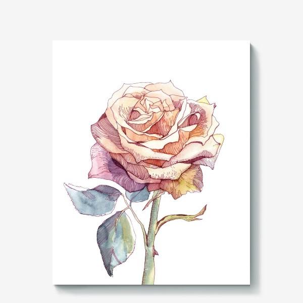 Холст «Персиковая роза»
