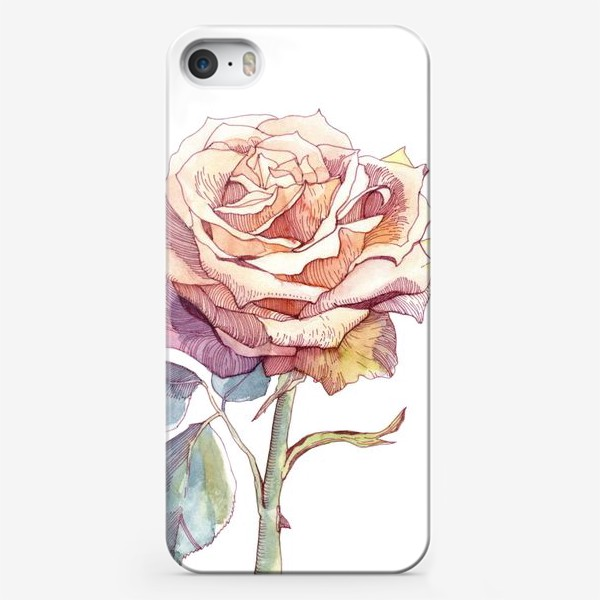 Чехол iPhone «Персиковая роза»
