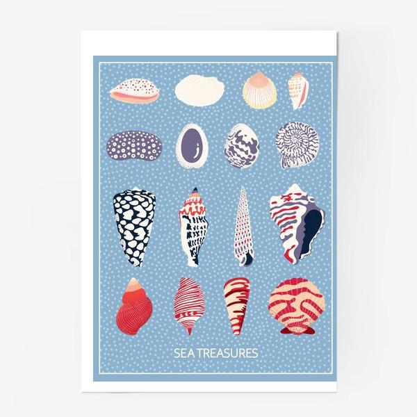 Постер «Ракушки - морские сокровища»