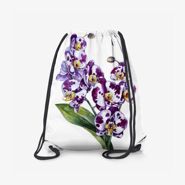 Рюкзак «Пятнистая орхидея»