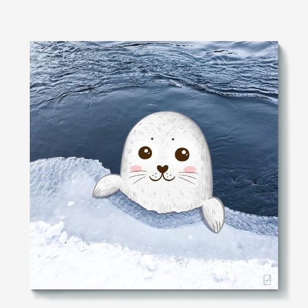 Холст «Милый тюлень»