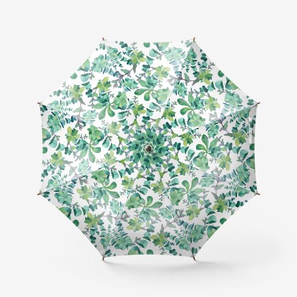 Зонт «Эвкалипт и дикая мята»