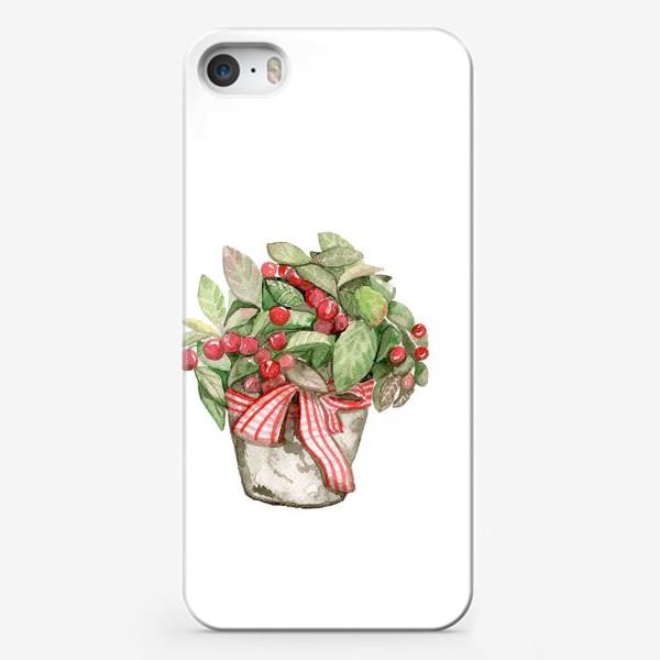 Чехол iPhone «Цветок в горшочке»