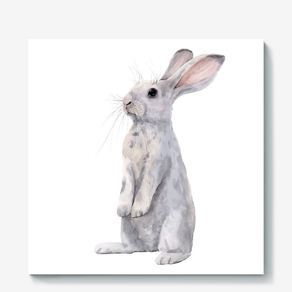 Холст «Кролик»