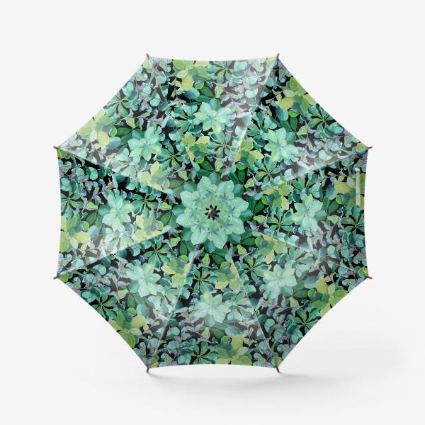 Зонт «Дикая мята и эвкалипт »