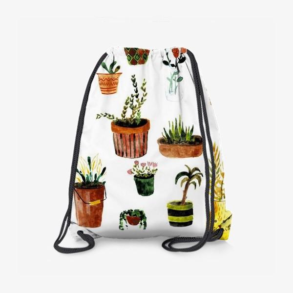 Рюкзак «Комнатные растения»