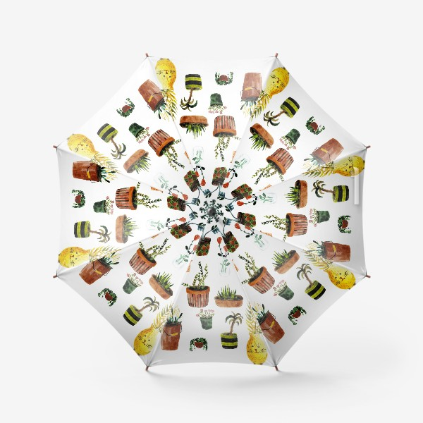 Зонт «Комнатные растения»