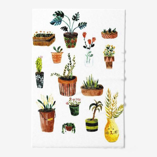 Полотенце «Комнатные растения»