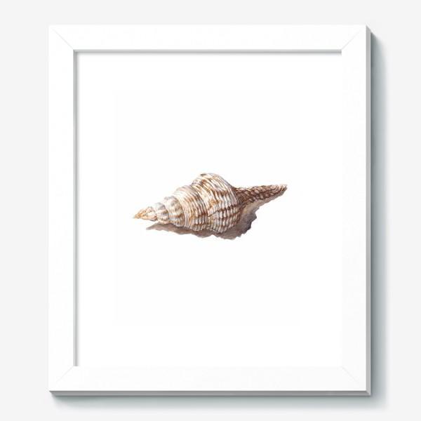 Картина «море ракушка»