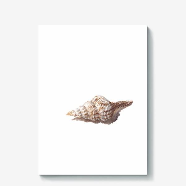 Холст «море ракушка»