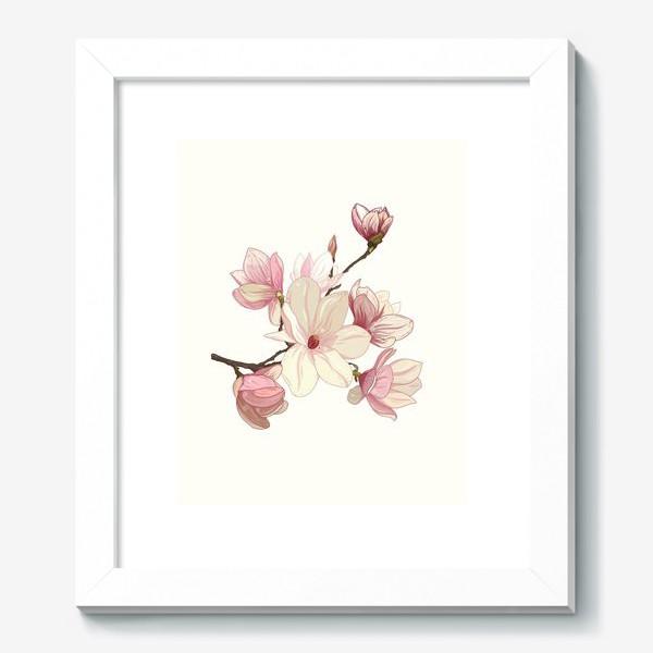 Картина «Цветы магнолии. Нежные и прекрасные.»