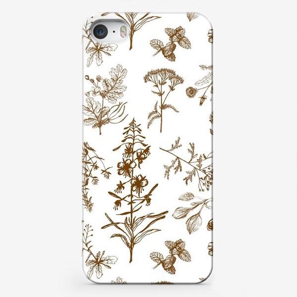 Чехол iPhone «Летние полезные травы»