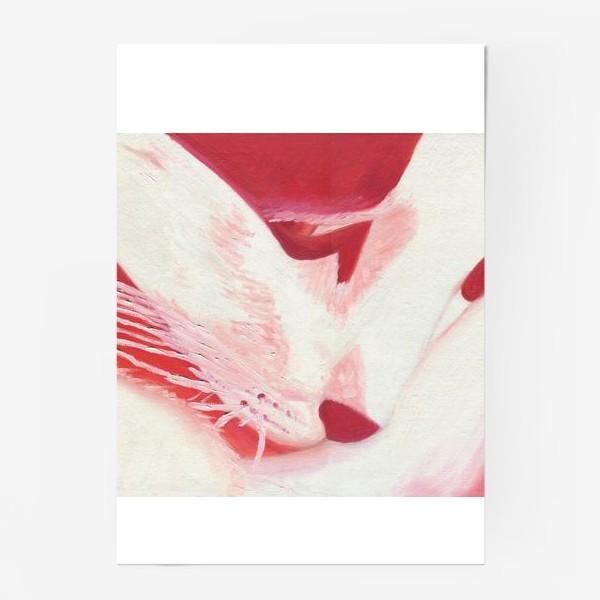 Постер «Красный кот. Масло»