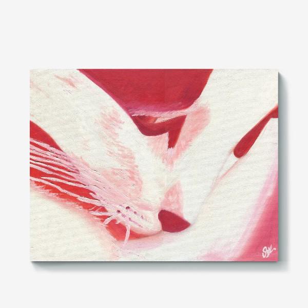 Холст «Красный кот. Масло»