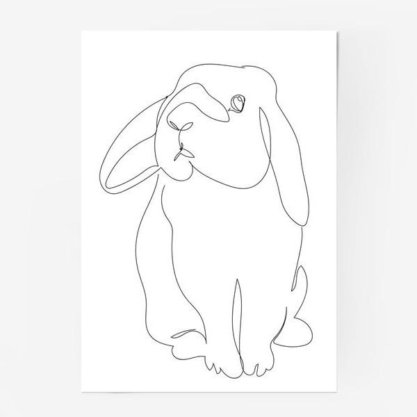 Постер «Кролик. Графика. Линейный рисунок»