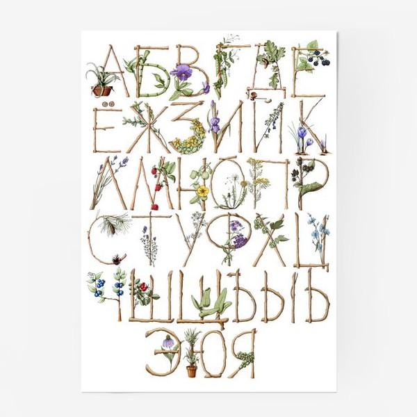 Постер «Ботанический алфавит»