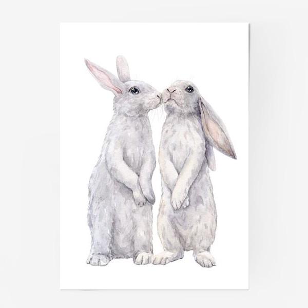 Постер «bunny»