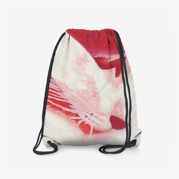 Рюкзак «Красный кот. Масло»