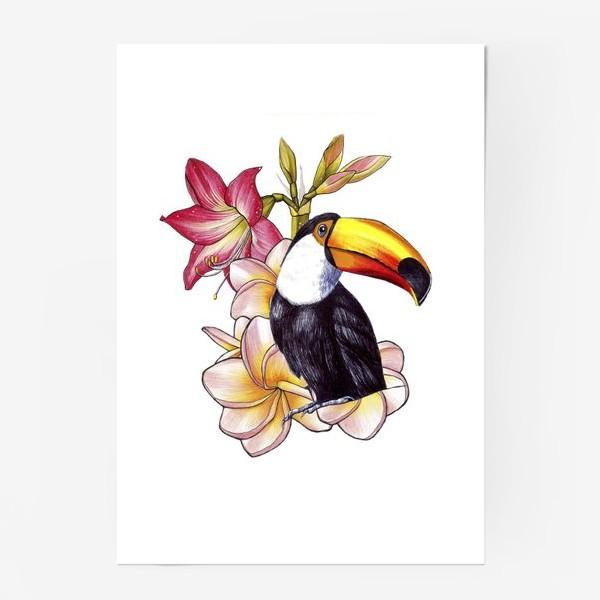 Постер «Тропические цветы и тукан»