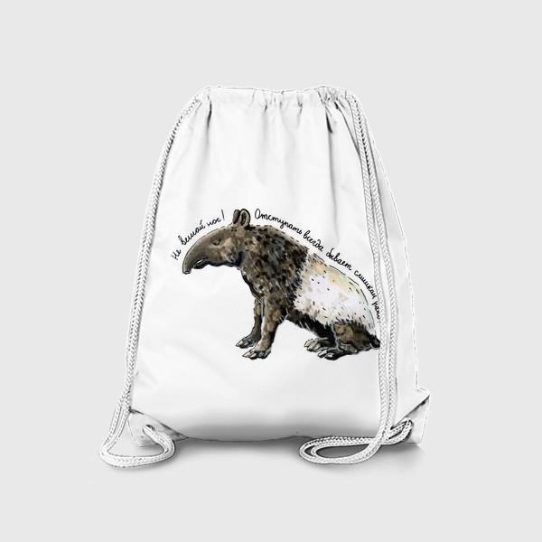 Рюкзак «ТАПИР »