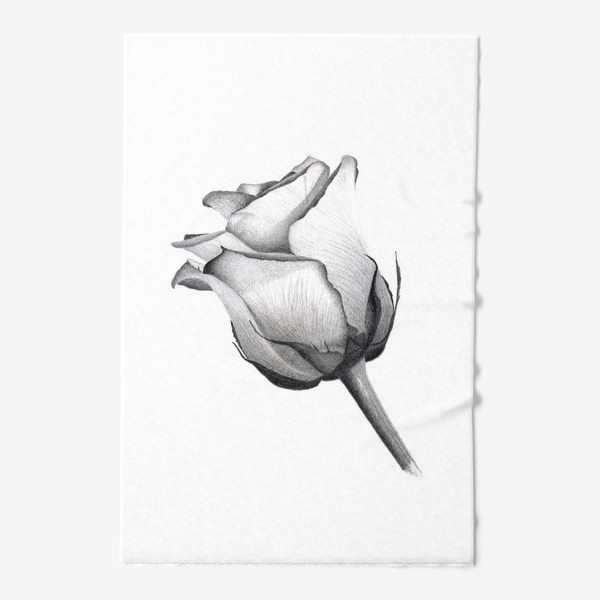 Полотенце «Роза. Рисунок розы. Графика. Реализм.»