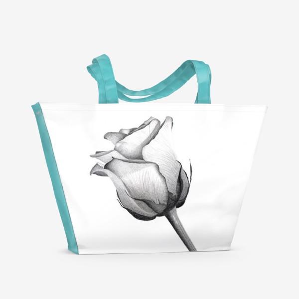 Пляжная сумка «Роза. Рисунок розы. Графика. Реализм.»