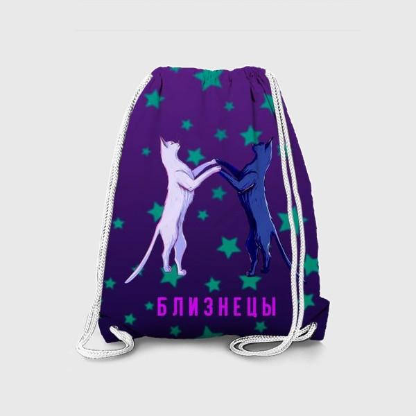 Рюкзак «Подарок близнецам. Коты»