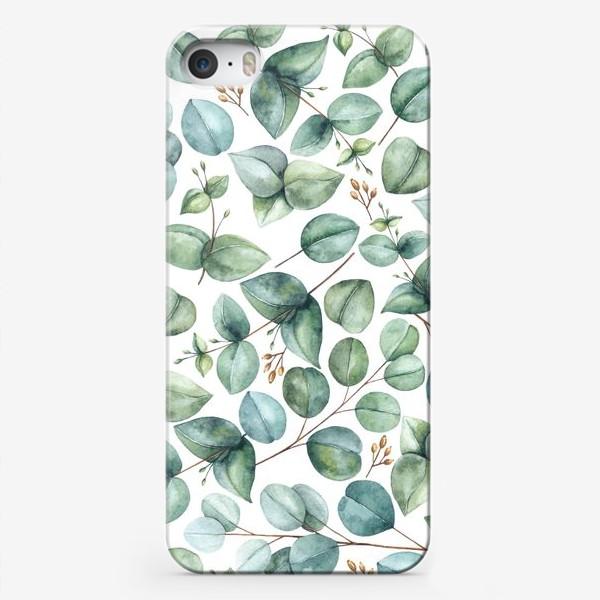 Чехол iPhone «Эвкалиптовые ветви и листья»