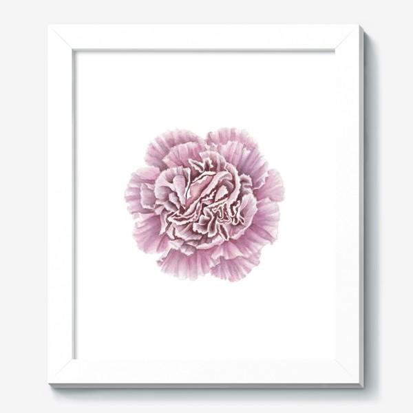 Картина «Розовая гвоздика цветок Carnation»