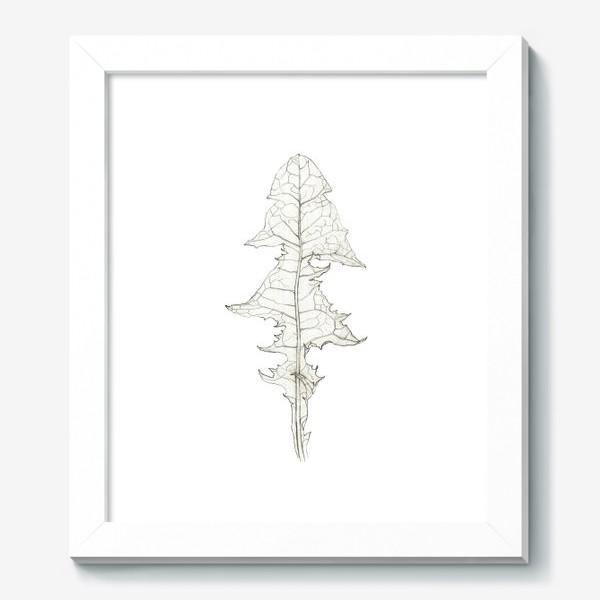Картина «Лист одуванчика Dandelion Leaf»