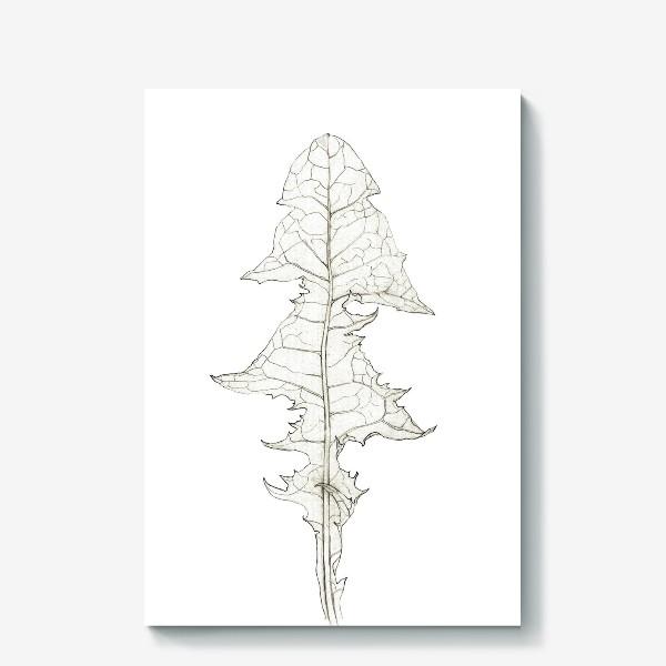 Холст «Лист одуванчика Dandelion Leaf»